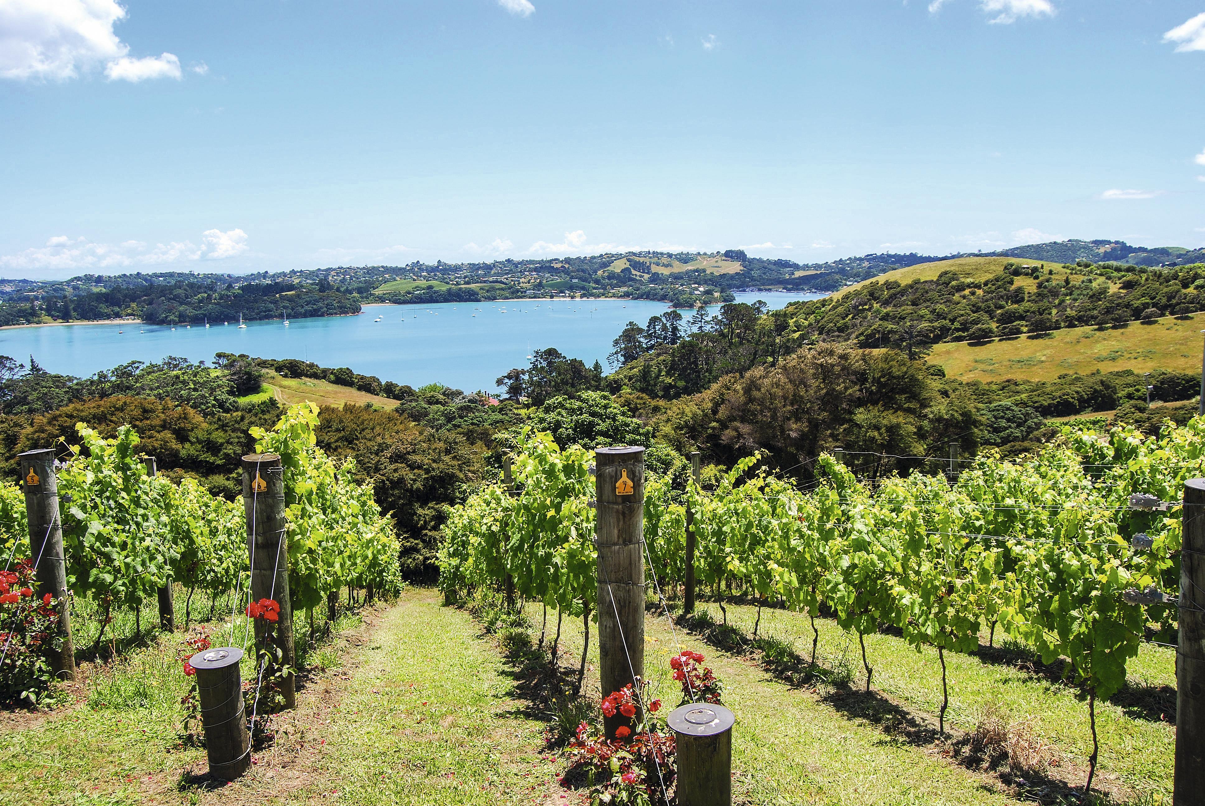 Vinícola Te Whau, Waiheke Island, Nova Zelândia