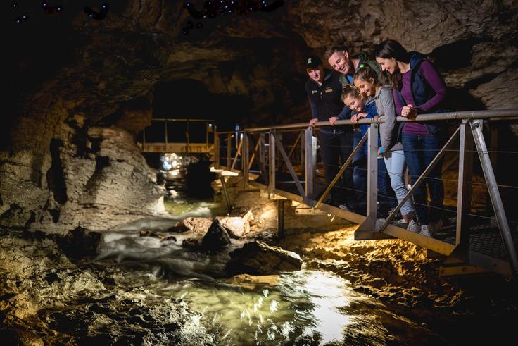 Interior da Caverna de Larvas, Nova Zelândia