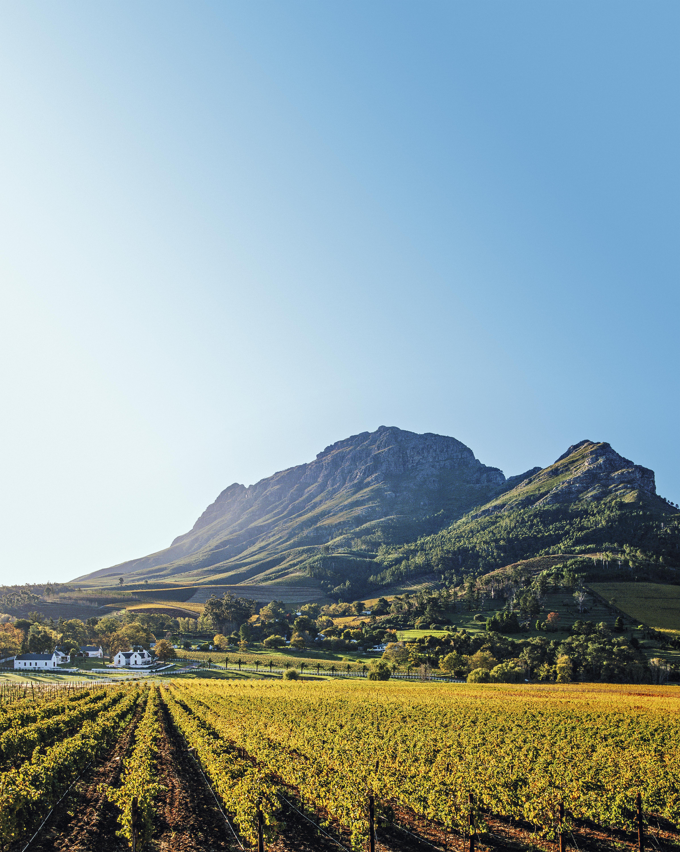 Vale de Franschhoek, África do Sul