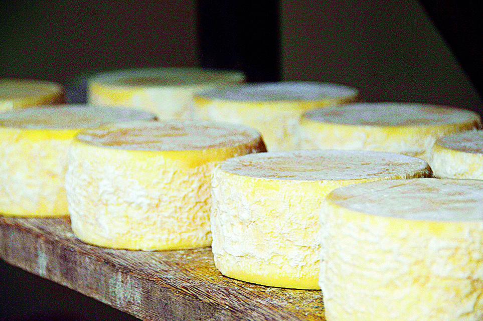 Nem pense em sair da cidade sem um queijo do Serro...