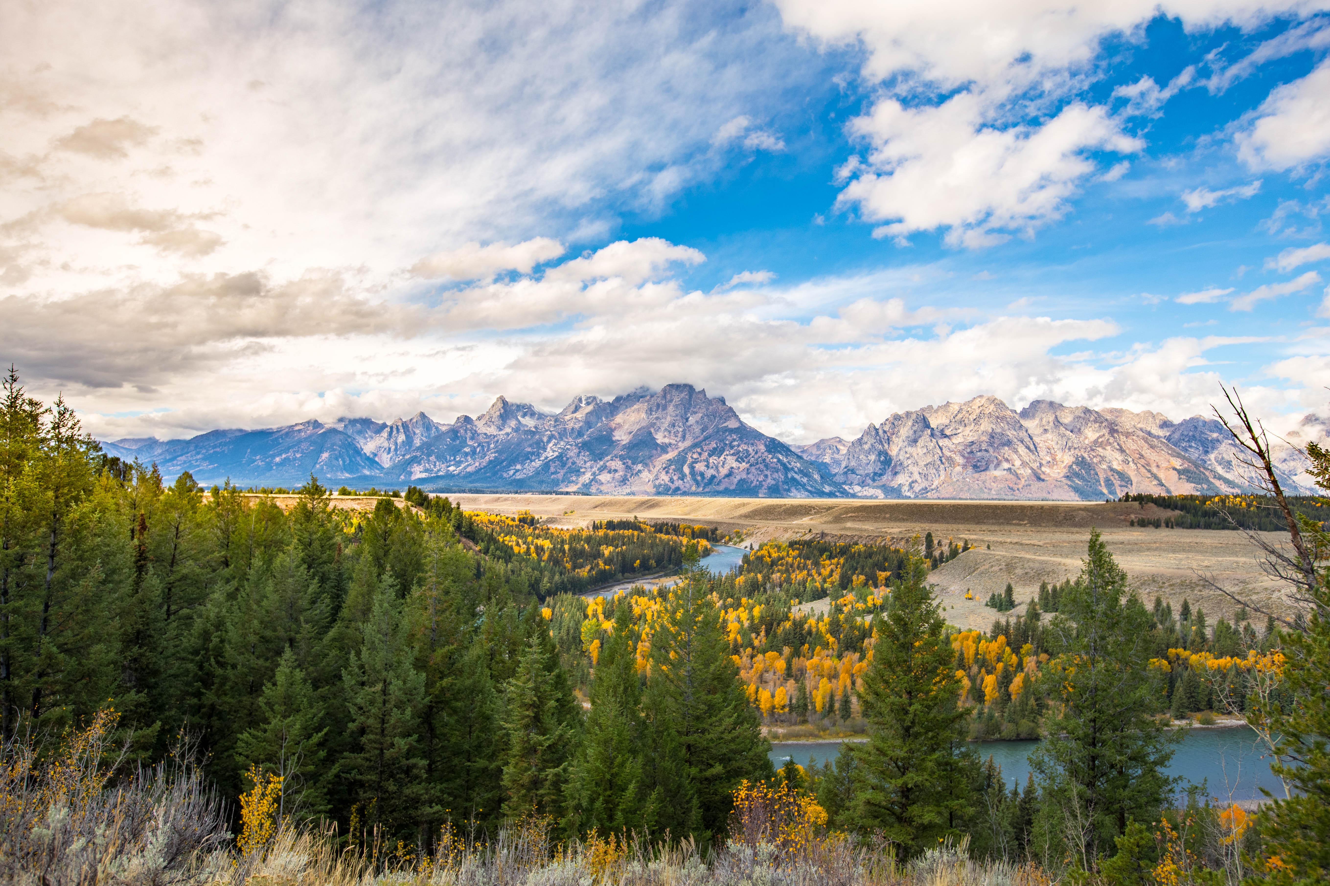 Vista do parque nacional de Grand Teton