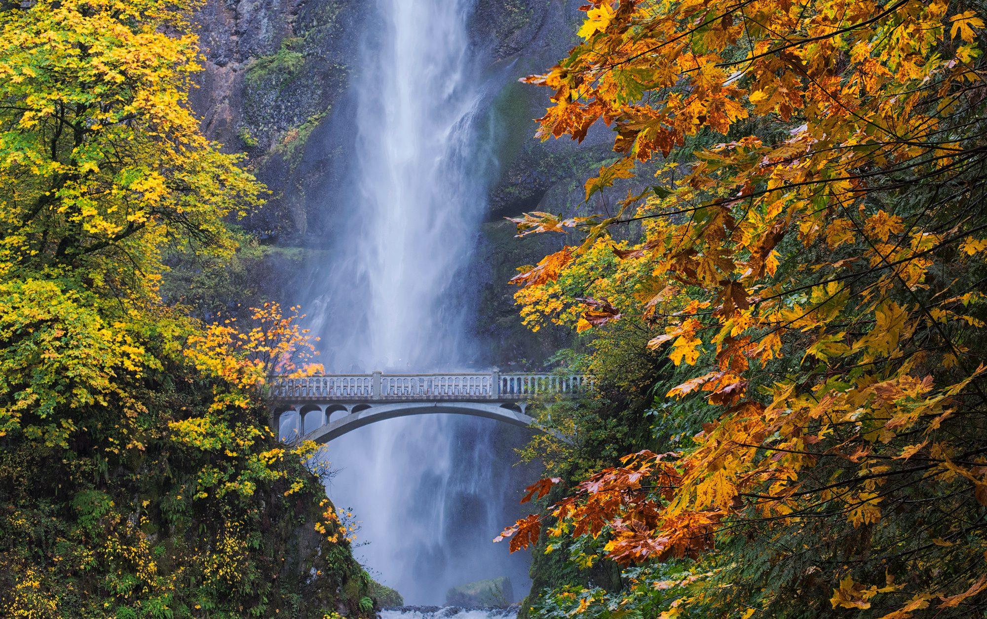 Columbia river Gorge, em Oregon, no outono. Crédito: