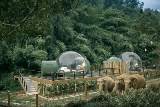 Anantara Gold Triangle Elephant Camp, Tailândia