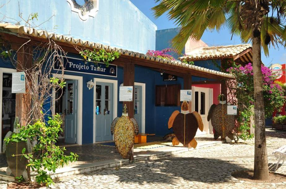 Há uma loja do Projeto Tamar na Vila Nova da Praia