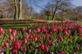 Parque Keukenhof, Países Baixos