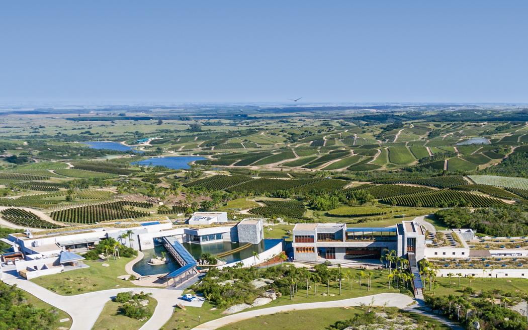 A Bodega Garzón, do Uruguai, ficou em quarto lugar no ranking mundial. Crédito: