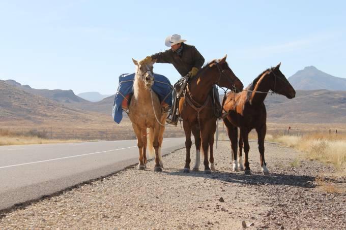 Filipe Masetti cavalos