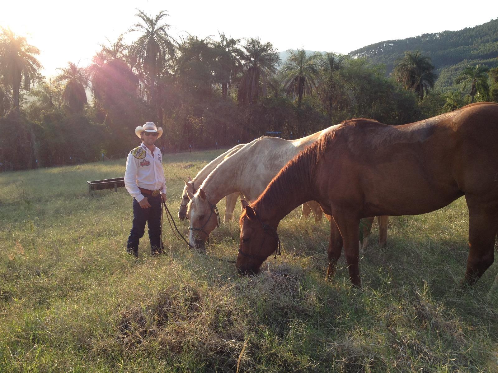"""Os cavalos de Filipe já no Brasil, depois de percorrerem mais de 16 000 km: """"eles não são coitados, muito pelo contrário"""""""