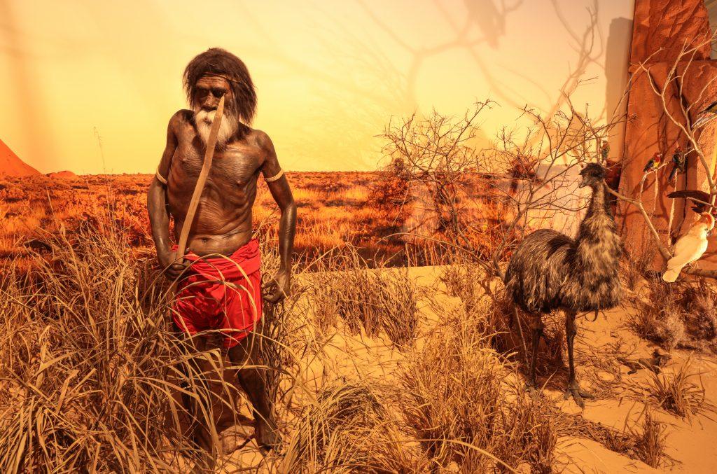 Museu de História Natural de Itatiba (SP) conta a história da evolução humana