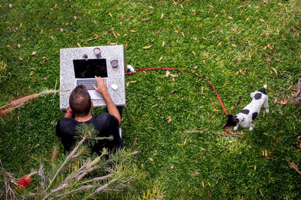 Jovem a trabalhar no computador ao ar livre, no jardim da Digital Nomads, na Ponta do Sol, acompanhado de seu cachorro