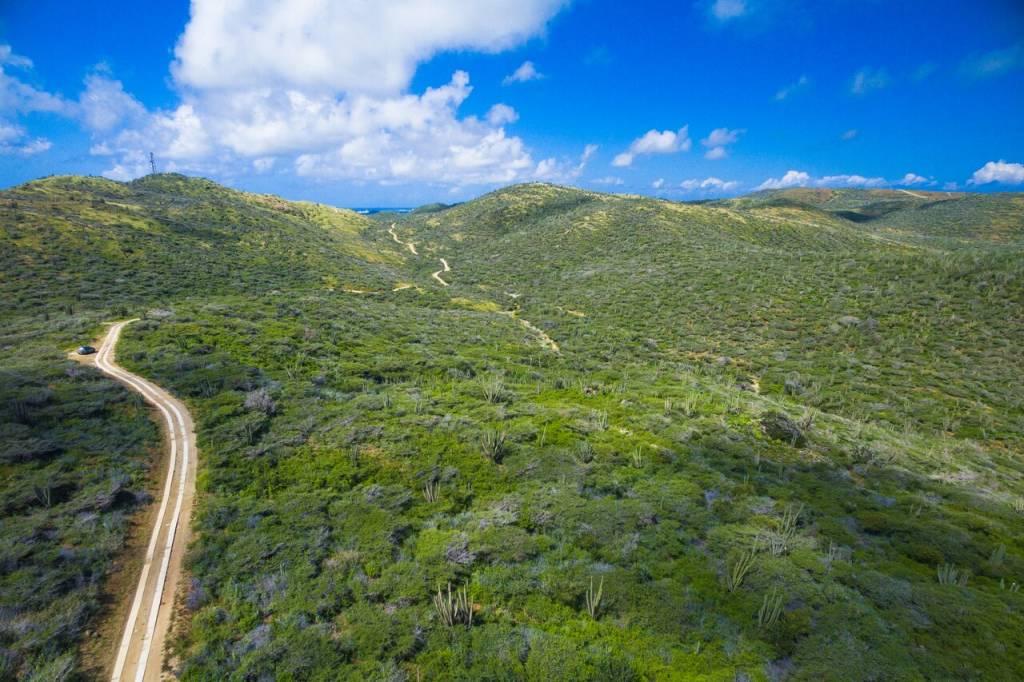 Vista aérea do Parque Nacional Arirok, Aruba, Caribe
