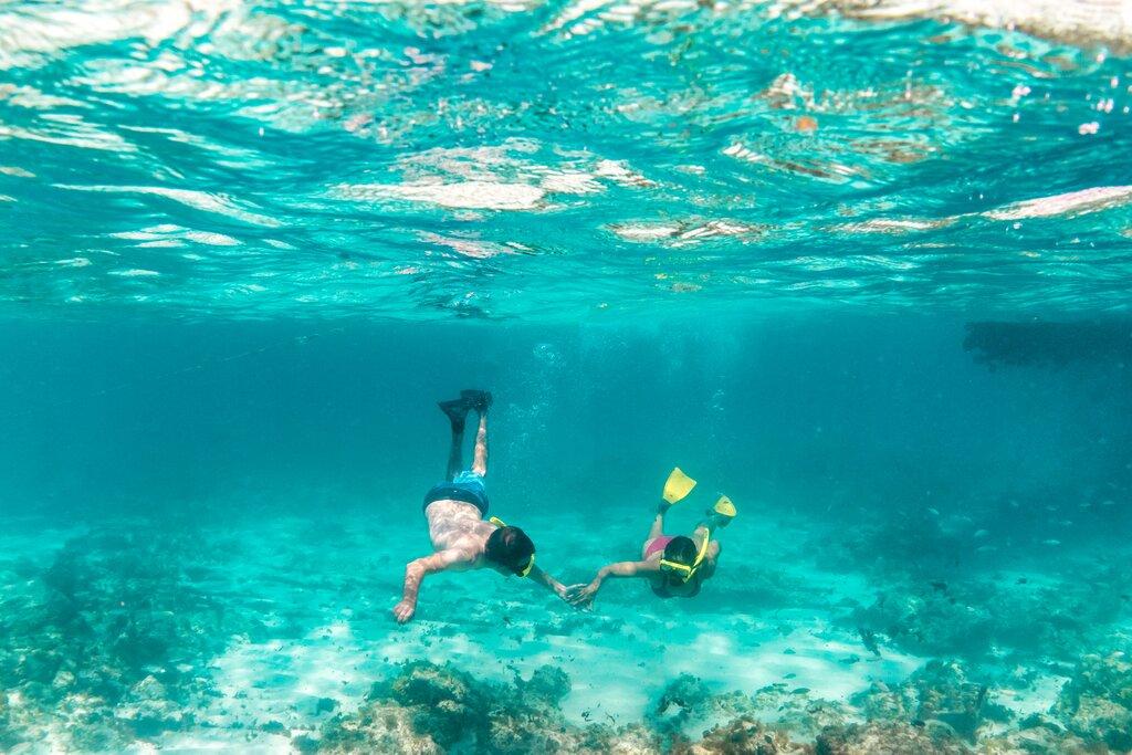Snorkel, Aruba, Caribe
