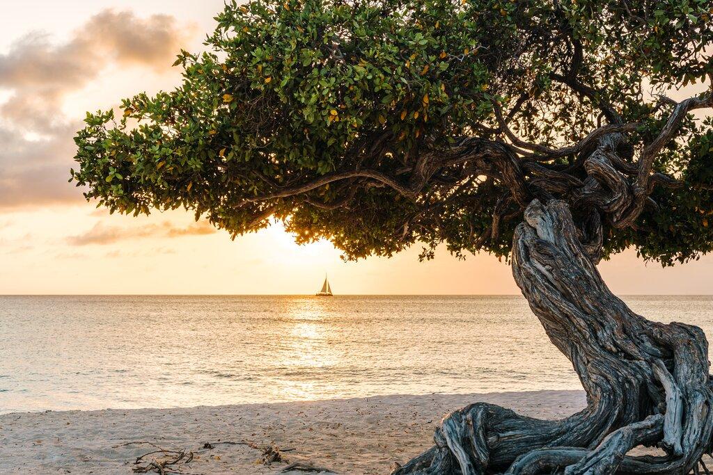 Eagle Beach, Aruba, Caribe