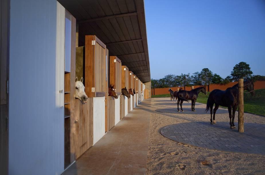 Área de equitação é preparada para os iniciantes e experientes