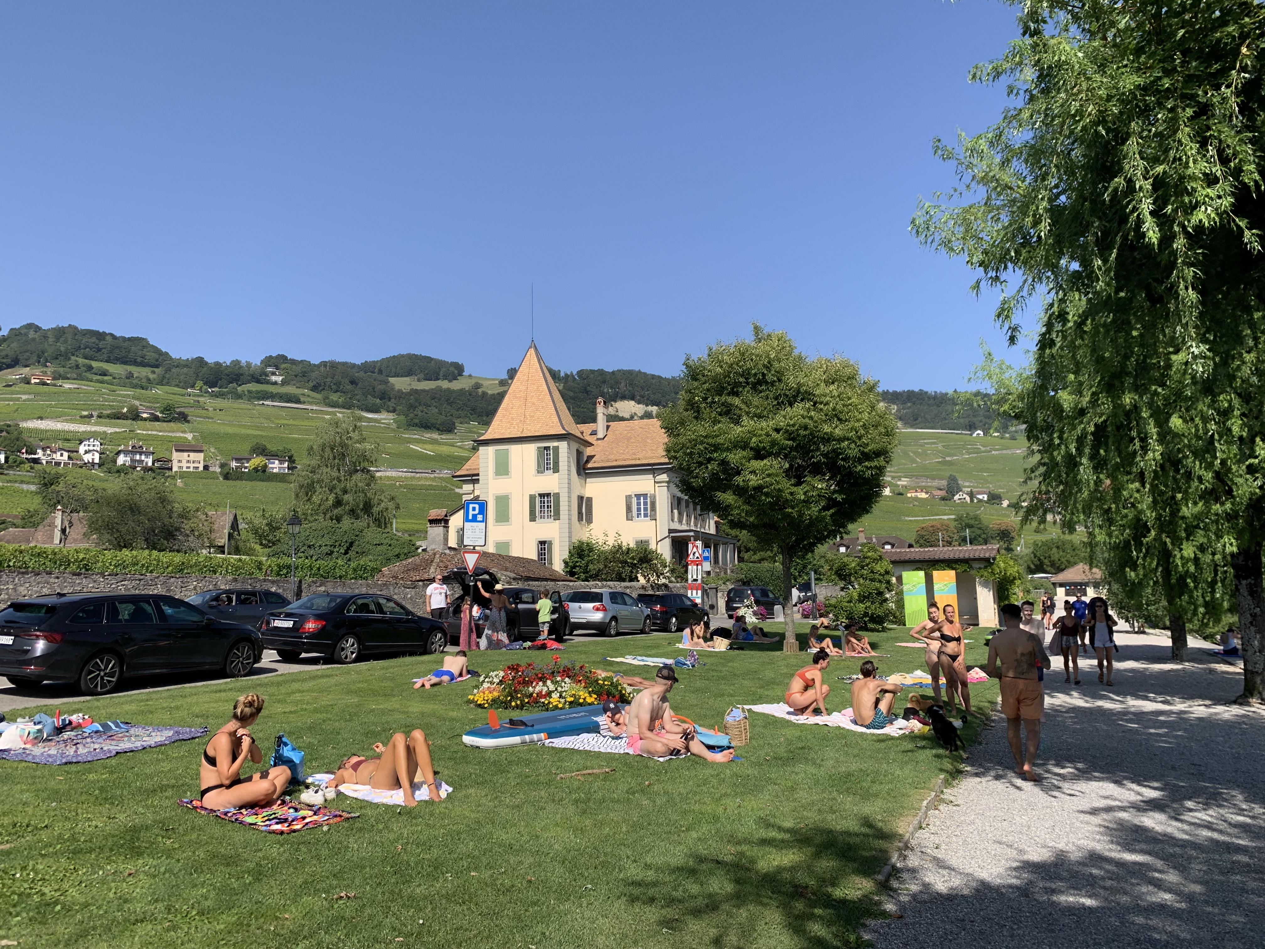 Verão em Cully: louros ao sol.